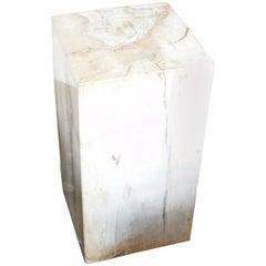 Andrianna Shamaris Petrified Wood Side Table or Pedestal