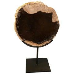 Andrianna Shamaris Petrified Wood Slab on Metal Stand