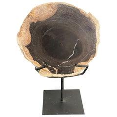 Andrianna Shamaris Petrified Wood Slab on Stand
