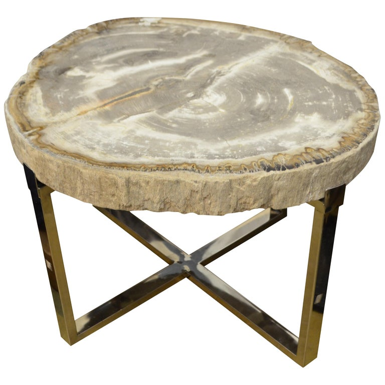 Andrianna Shamaris Petrified Wood Slab Side Table For Sale