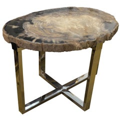 Andrianna Shamaris Petrified Wood Slab Side Table