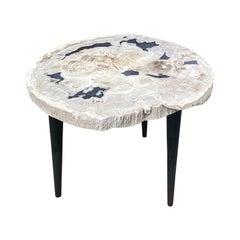 Andrianna Shamaris Petrified Wood Slab Table with Steel Base