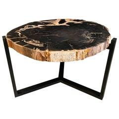 Andrianna Shamaris Petrified Wood Slab Top Side Table