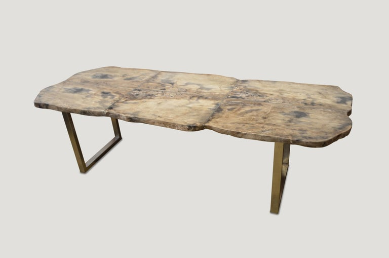 High quality petrified wood live edge dining table, coffee table or counter top. This two inch thick slab is shown with a stainless steel base which we can also switch out for two espresso stained wooden bases, coffee table height. The petrified