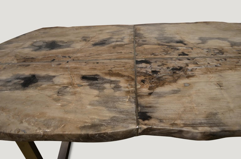 Stainless Steel Andrianna Shamaris Petrified Wood Table For Sale