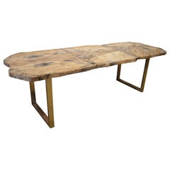 Andrianna Shamaris Petrified Wood Table