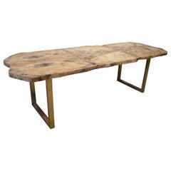 Andrianna Shamaris Petrified Wood Table