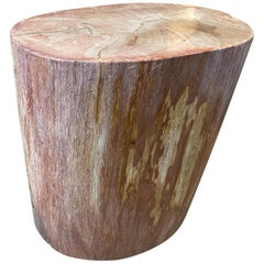 Andrianna Shamaris Rare Coral Toned Petrified Wood Side Table