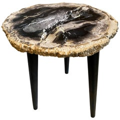 Andrianna Shamaris Rare Palm Petrified Wood Side Table