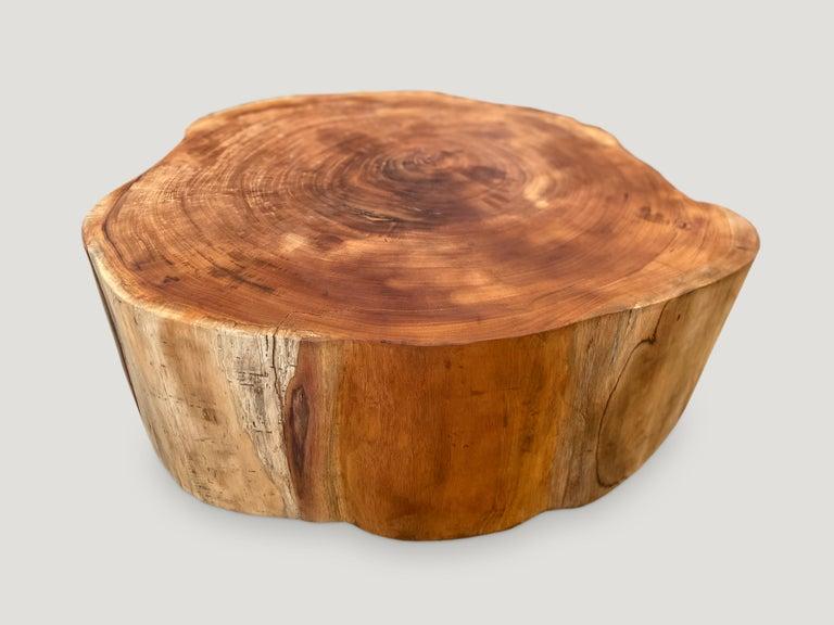 Organic Modern Andrianna Shamaris Reclaimed Mahogany Wood Coffee Table For Sale