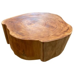 Andrianna Shamaris Reclaimed Mahogany Wood Coffee Table