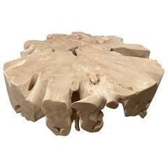 Andrianna Shamaris Round Bleached Teak Wood Organic Coffee Table