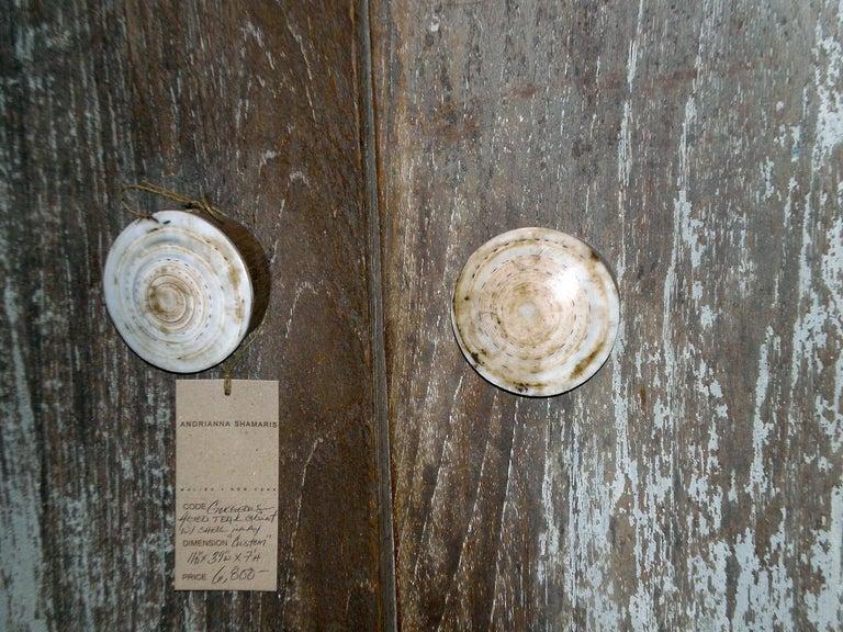 Andrianna Shamaris Shell and Teak Wood Door Knob For Sale 8
