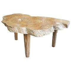 Andrianna Shamaris Single Slab Live Edge Coffee Table or Side Table