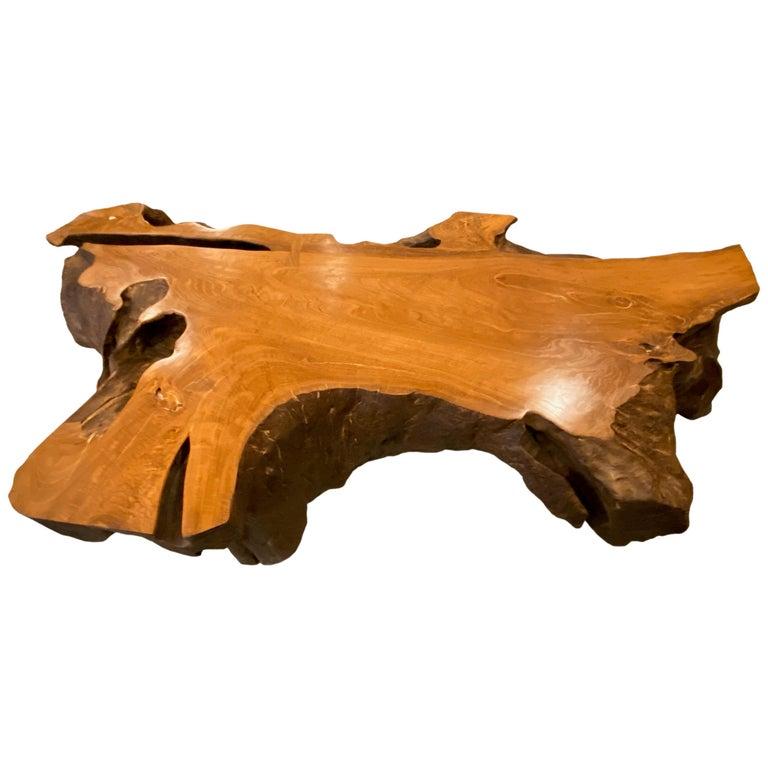 Andrianna Shamaris Single Teak Wood Root Coffee Table For Sale