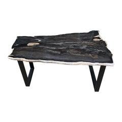 Andrianna Shamaris Slab Top Petrified Wood Coffee Table
