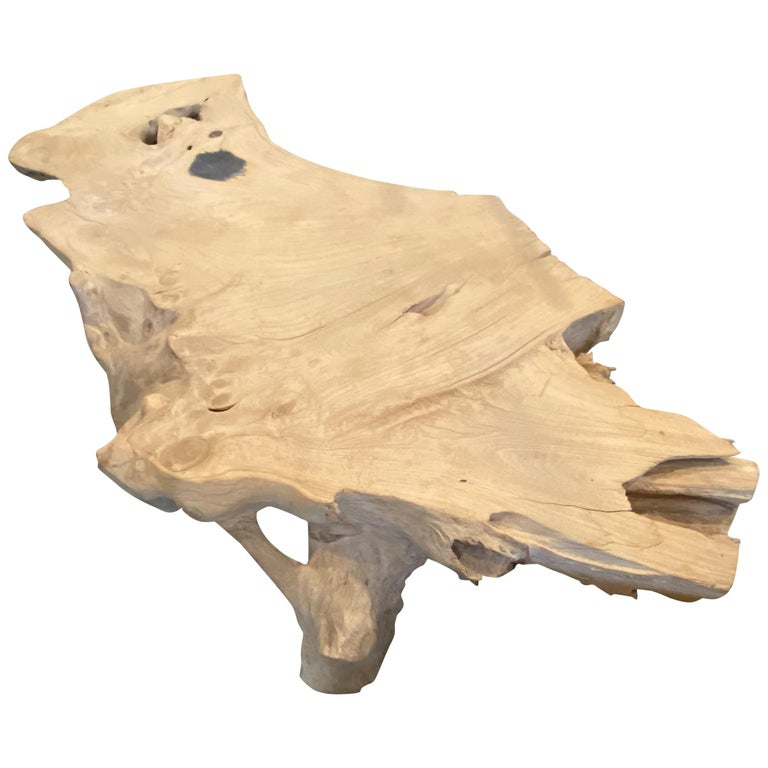 Andrianna Shamaris St. Barts Teak Wood and Resin Coffee Table For Sale