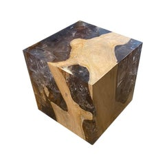 Andrianna Shamaris St. Barts Teak Wood and Resin Side Table