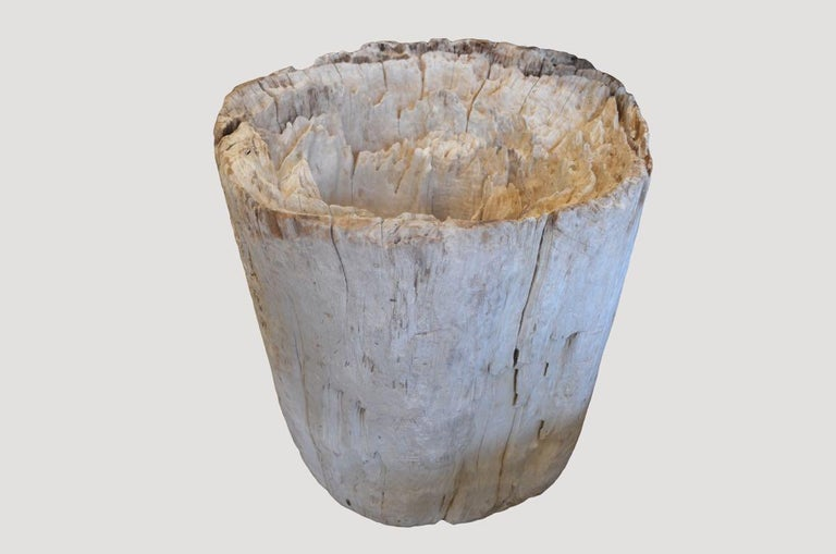 Organic Modern Andrianna Shamaris St. Barts Teak Wood Erosion Table Base For Sale