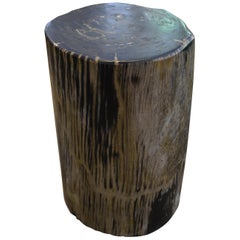 Andrianna Shamaris Striped Petrified Wood Side Table