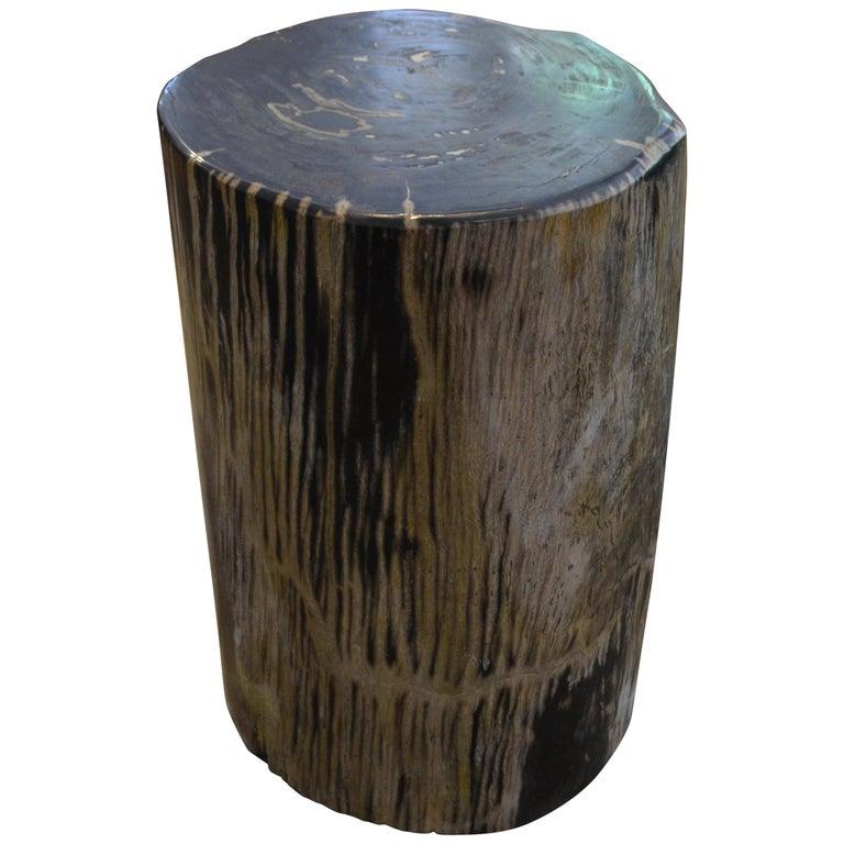 Andrianna Shamaris Striped Petrified Wood Side Table For Sale