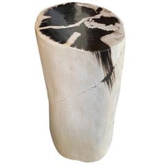 Andrianna Shamaris Super Smooth Black and White Petrified Wood Pedestal