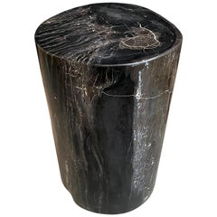 Andrianna Shamaris Super Smooth Black and White Petrified Wood Side Table