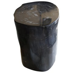 Andrianna Shamaris Super Smooth Black High Quality Petrified Wood Side Table