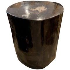 Andrianna Shamaris Super Smooth Black Petrified Wood Side Table