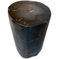 Andrianna Shamaris Super Smooth Black Toned Petrified Wood Side Table