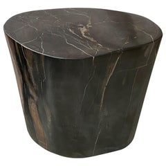 Andrianna Shamaris Super Smooth High Quality Petrified Wood Side Table