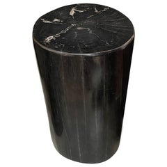 Andrianna Shamaris Super Smooth High Quality Petrified Wood Side Table