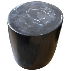 Andrianna Shamaris Super Smooth Indigo Black and Grey Petrified Wood Side Table