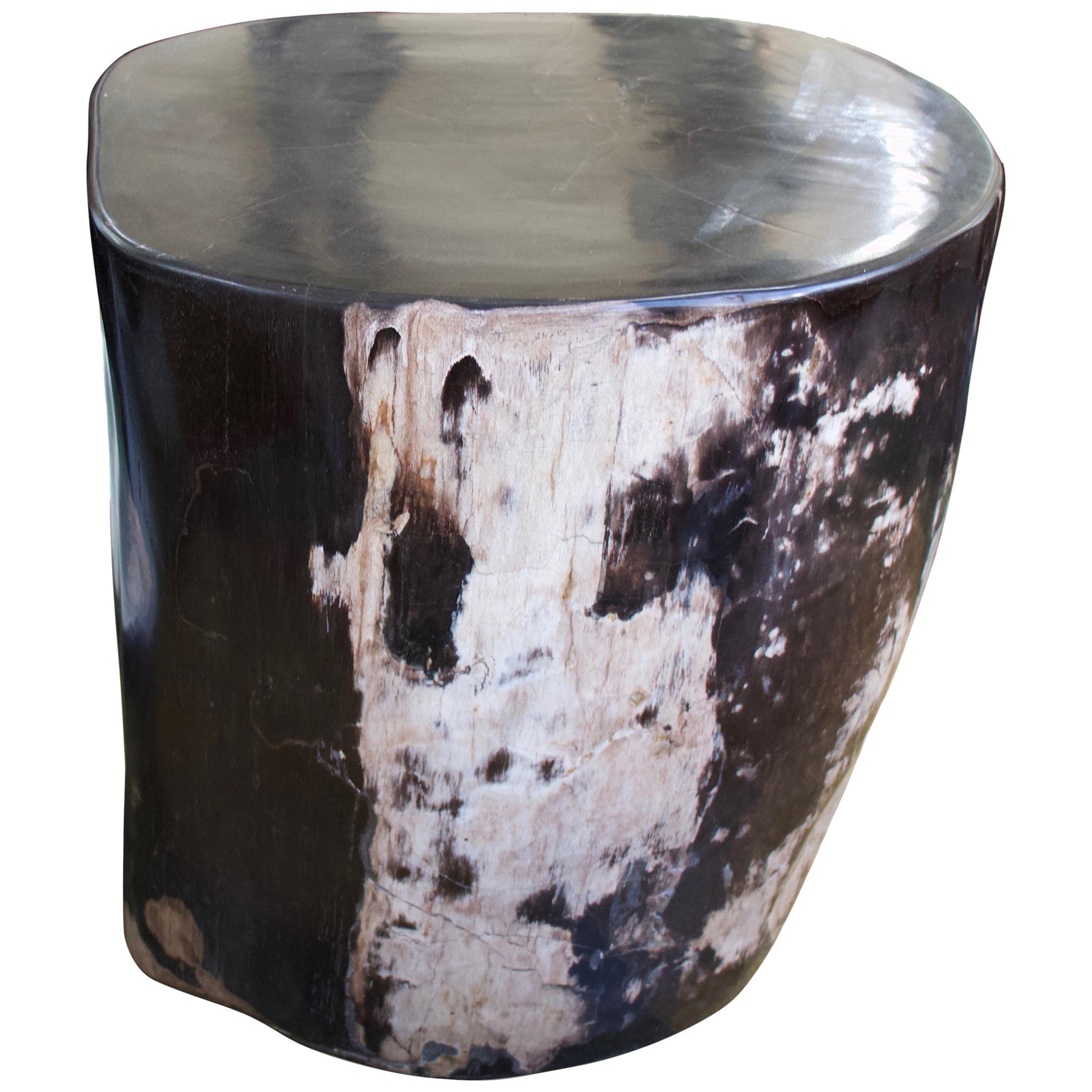 Andrianna Shamaris Super Smooth Oval Petrified Wood Side Table
