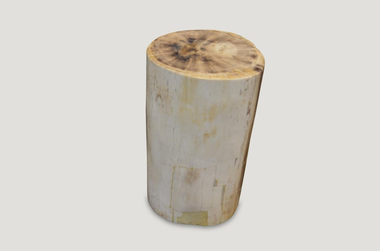 Andrianna Shamaris Super Smooth Petrified Wood Side Table In Excellent Condition For Sale In New York, NY