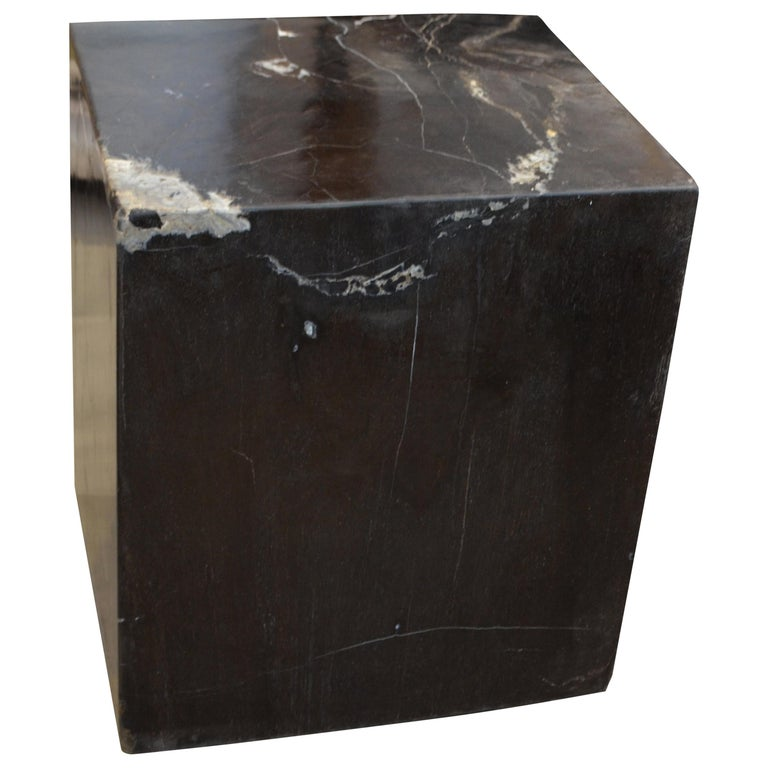 Andrianna Shamaris Super Smooth Petrified Wood Side Table For Sale