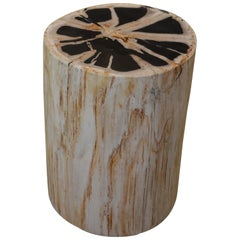 Andrianna Shamaris Super Smooth Petrified Wood Side Table