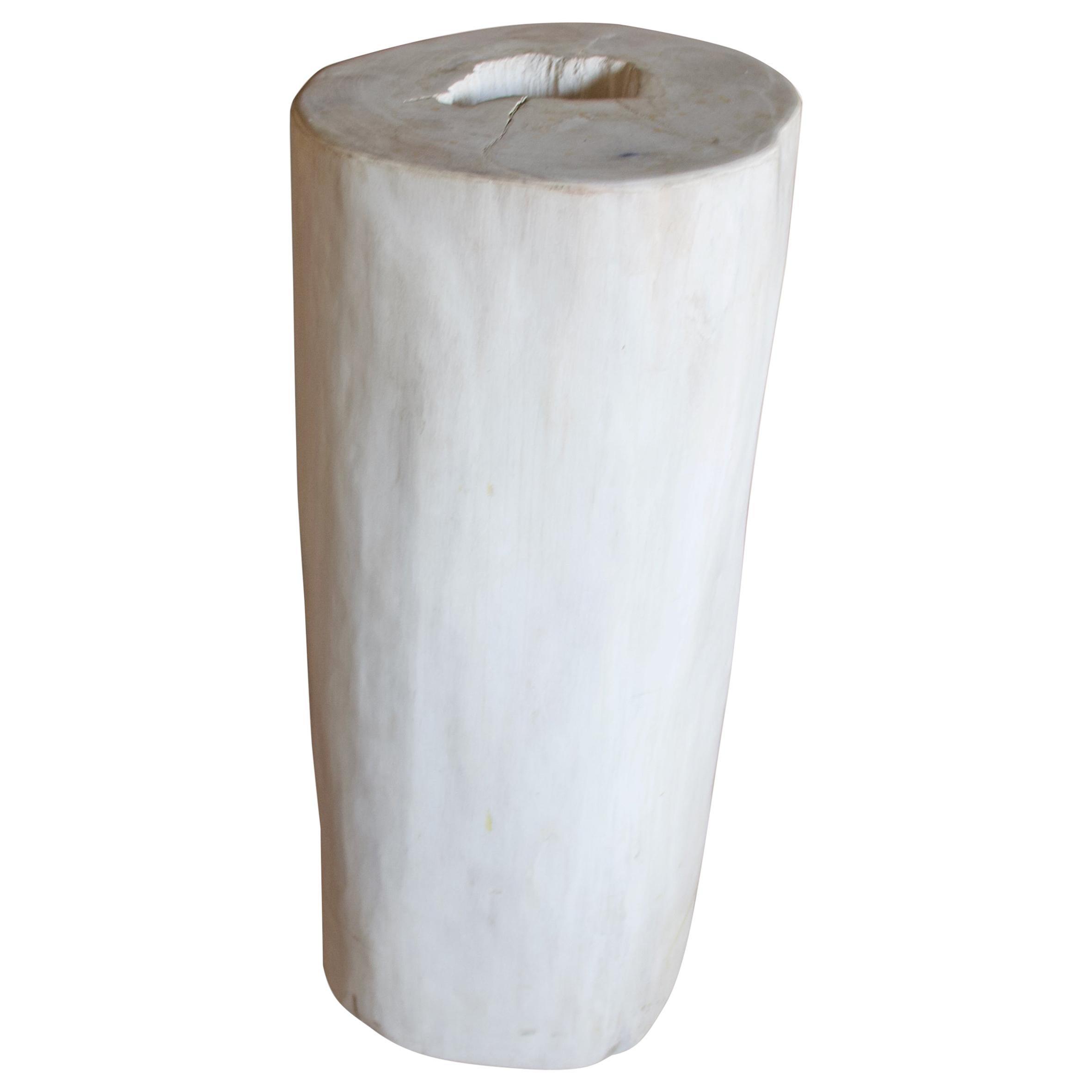 Andrianna Shamaris Super Smooth White Petrified Wood Side Table
