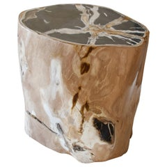 Andrianna Shamaris Super Special High Quality Petrified Wood Side Table