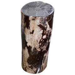 Andrianna Shamaris Tall Contrasting Color Toned Petrified Wood Side Table