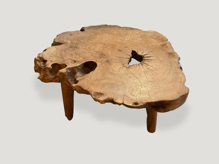 Reclaimed teak root coffee table or side table three inches thick. It's fascinating how Mother Nature produces these logs with such beautiful patterns and markings throughout. A blend of organic and midcentury. We polished the wood to enhance the