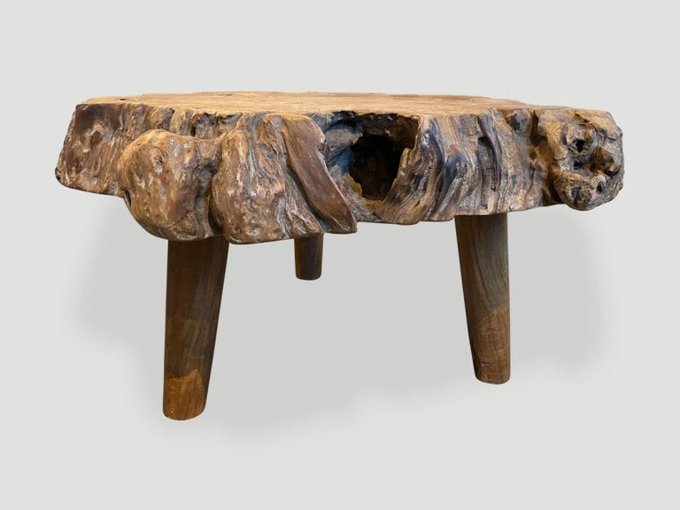 Andrianna Shamaris Teak Burl Wood Live Edge Coffee Table or Side Table For Sale 2