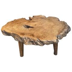 Andrianna Shamaris Teak Burl Wood Live Edge Coffee Table or Side Table