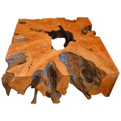Andrianna Shamaris Teak Root Coffee Table