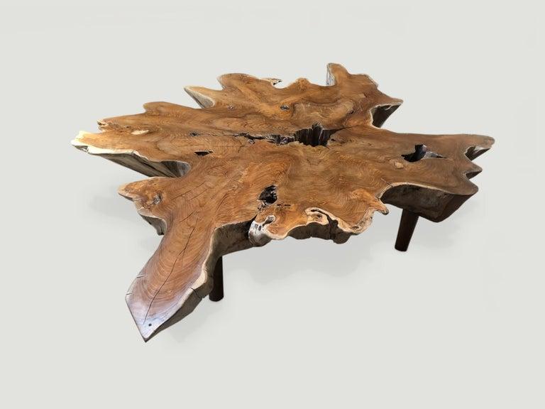 Organic Modern Andrianna Shamaris Teak Wood Organic Root Coffee Table For Sale