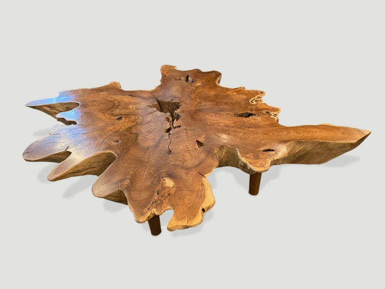 Andrianna Shamaris Teak Wood Organic Root Coffee Table In Excellent Condition For Sale In New York, NY