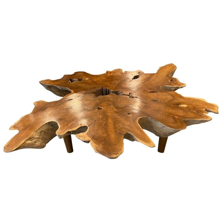 Andrianna Shamaris Teak Wood Organic Root Coffee Table For Sale