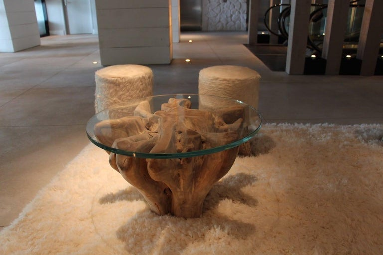 Contemporary Andrianna Shamaris Teak Wood Root Coffee Table Base For Sale