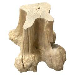 Andrianna Shamaris Teak Wood Root Side Table