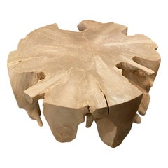 Andrianna Shamaris Teak Wood St. Barts Round Coffee Table